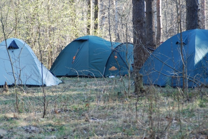 трехместные палатки в лесу