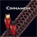 Цены на Кабель AudioQuest Firewire Cinnamon,   0.75m,   (6 - 9) Цифровой кабель Firewire IEEE1394/ i.Link. 6 - 9 pin. Длина  -  0,  75 м. Состав  -  медь высокой очистки  +  1.25% серебра. Цвет оплетки  -  черно - красный.